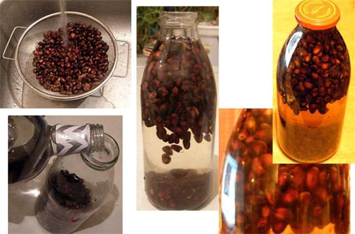 Как сделать настойку из кедровых орешки