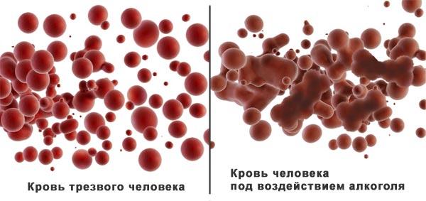 время вывода алкоголя из крови Алкоголь в крови сколько держится: таблица - Освобождение