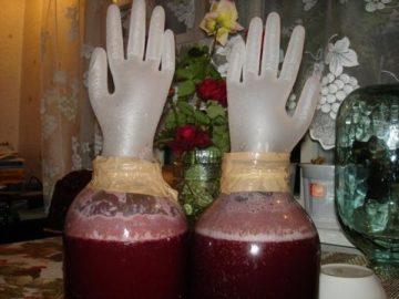 Рецепт браги из сливы для самогона
