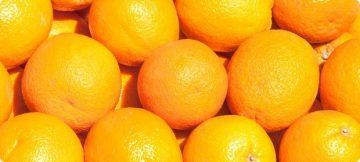 Рецепт домашнего вина из апельсинов