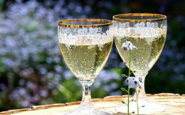 Рецепт приготовления шампанское в домашних условиях рецепты приготовления в мультиварке редмонд 4525