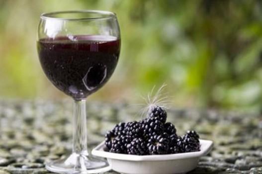 прихожие вино из шелковицы в домашних условиях простой рецепт крепким спиртным слабоалкогольными